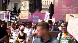 'Day of Rage' protest held in London